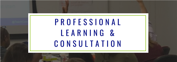 Professional Learning & Consultation Header (background image of a adults raising their hands during a workshop)